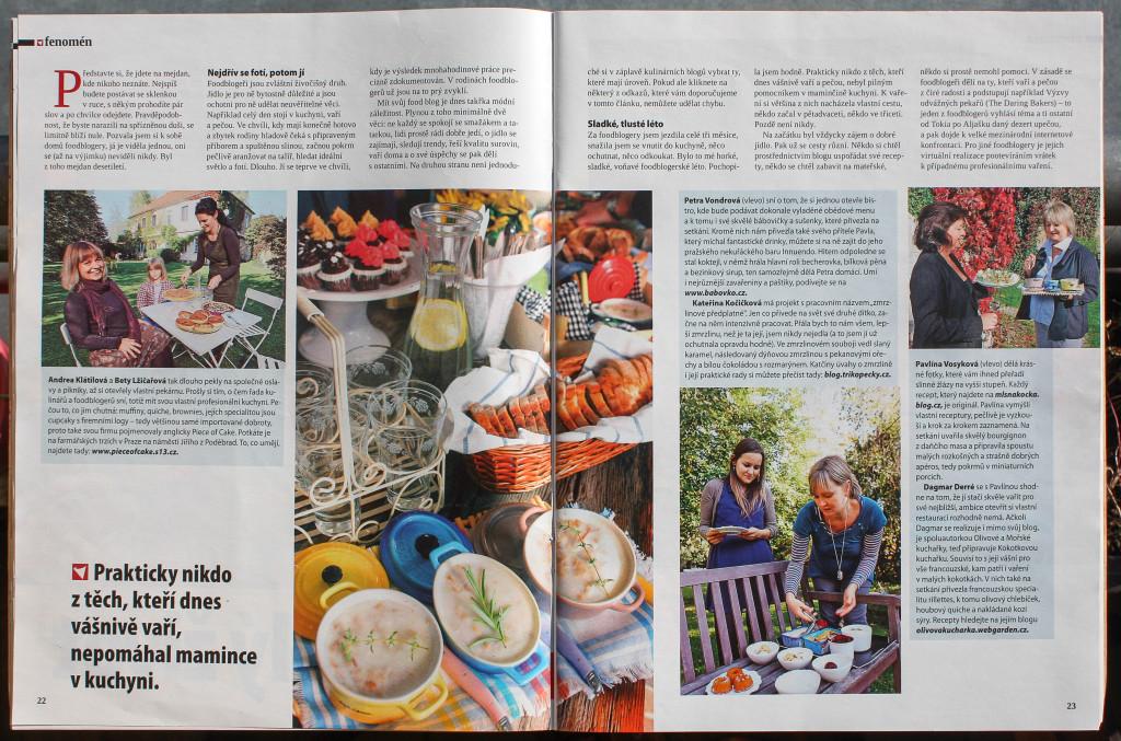 Článek o foodblogerech v Instinktu