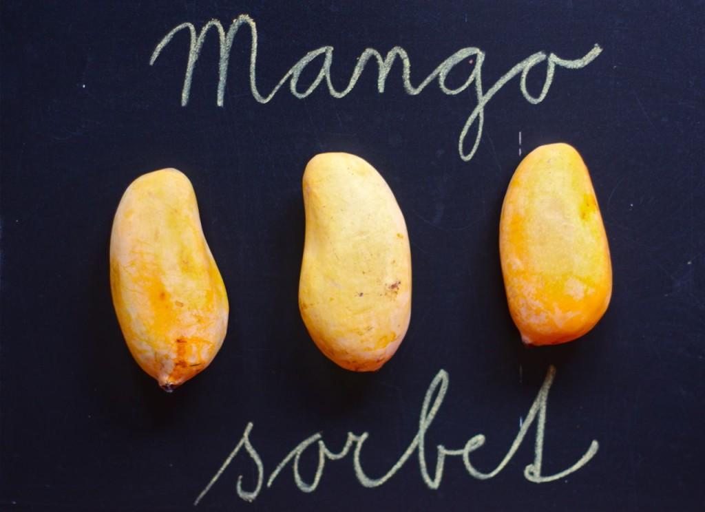 mangosorbet